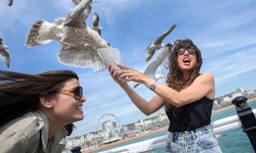 England Sprachreisen nach Brighton