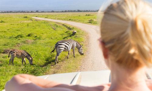 Englisch Sprachreisen für Schüler nach Südafrika