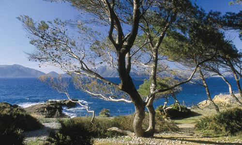 Spanisch Sprachkurs in Spanien - Mallorca