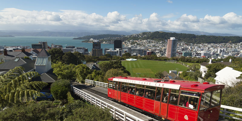 Neuseeland Praktikum Meeresbiologie, Umweltschutz, Chemie, Logistik, Lehramt, BWL