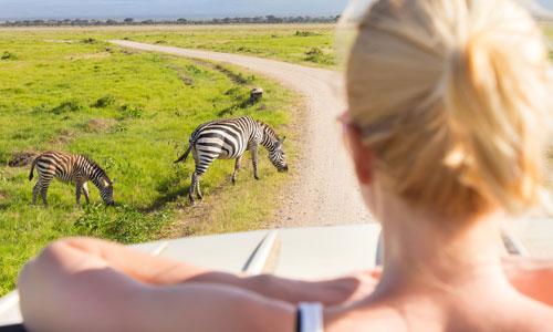 Auslandspraktikum in Südafrika